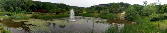 매룡지의 모습과 분수, 꽃