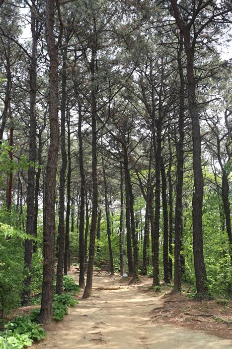 용인상갈근린공원08