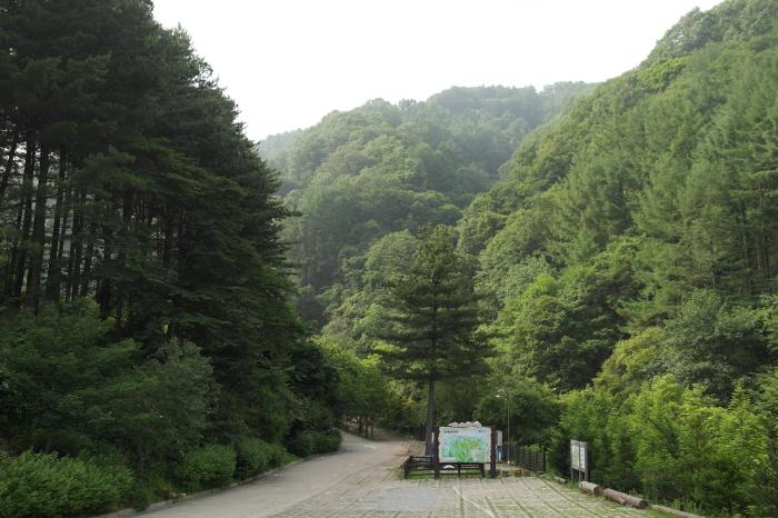 강씨봉 자연휴양림  입구