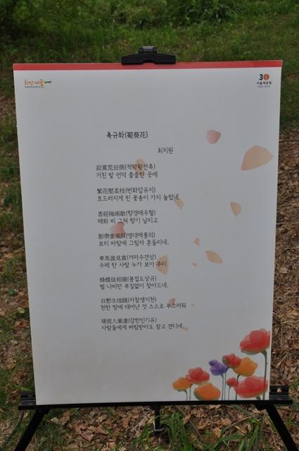 최치원 작 - 촉규화