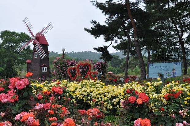 장미 정원