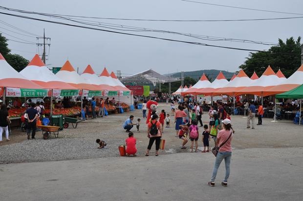 토마토축제 행사장 전경