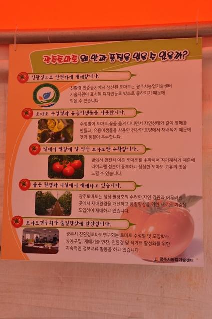 광주 토마토 홍보관