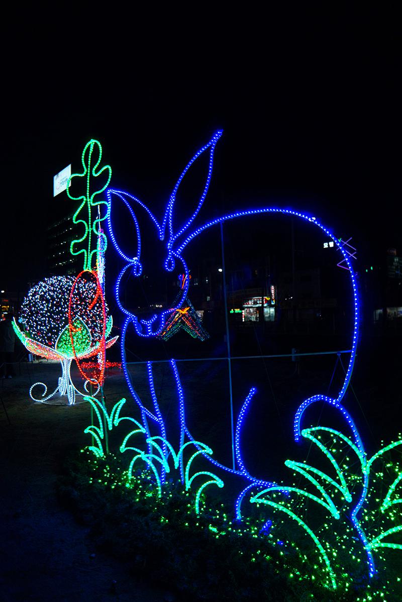 의정부 빛 축제 토끼모양 조형물