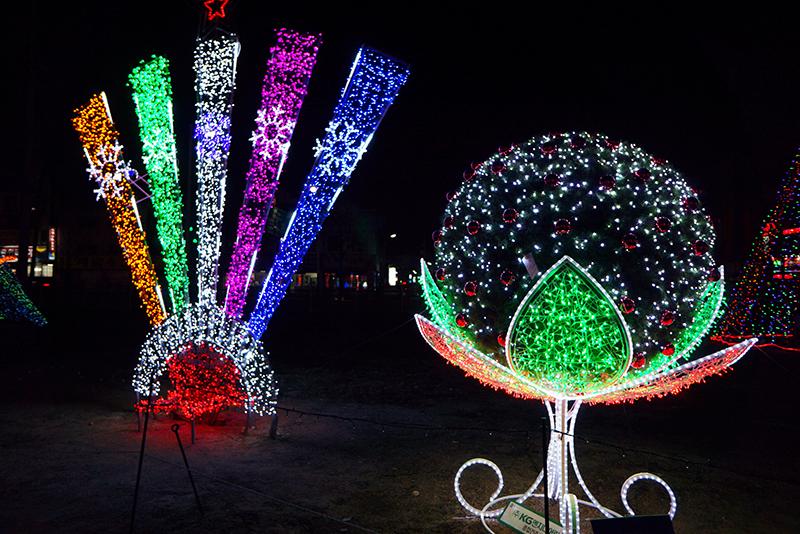 의정부 빛 축제 연꽃 모양 조형물