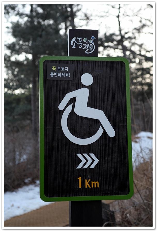 휠체어를 타고도 걸을 수 있는 소풍길