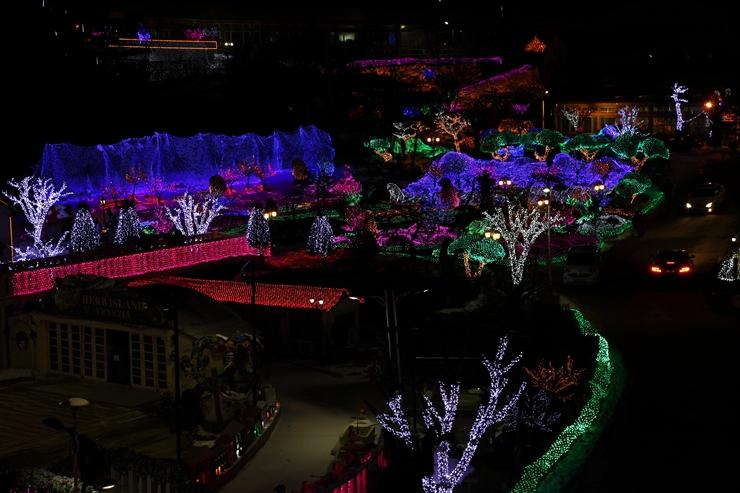 동화축제 야경