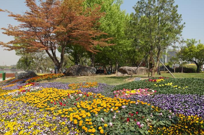 호수공원 꽃밭