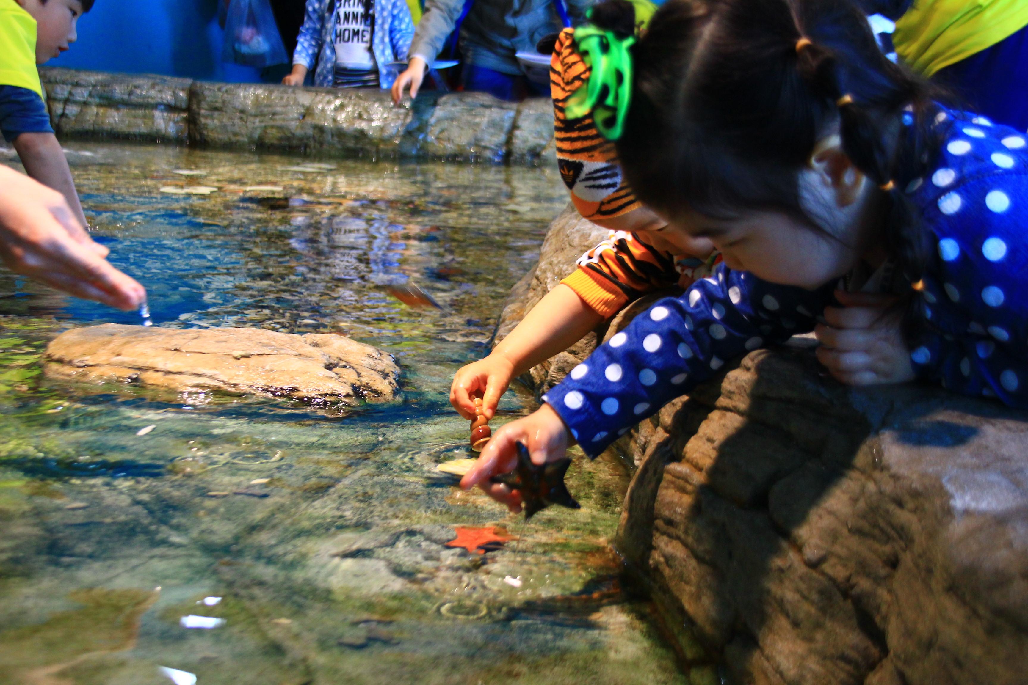 황악산.대부도,호수공원 1508