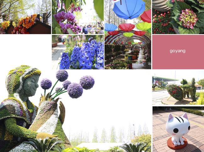 꽃박람회장 풍경