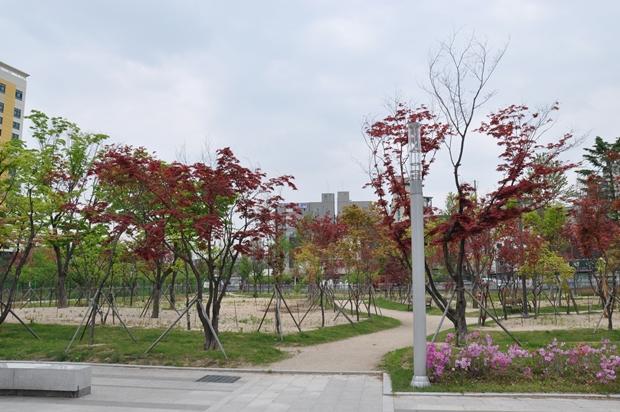 나무은행 임시공원