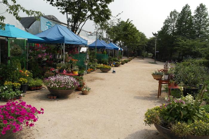 장자공원 입구 꽃집