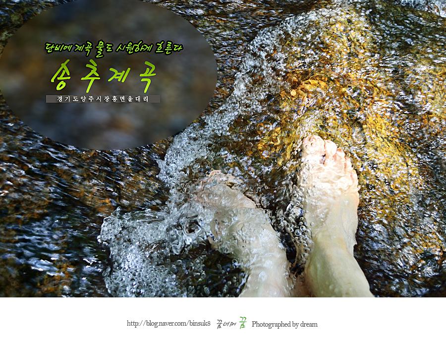 2015.07.14 단비에 계곡물도 시원하게 흐른다 송추계곡