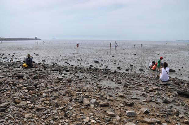 궁평리 갯벌체험장