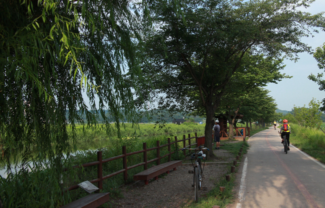 호조벌 자전거길