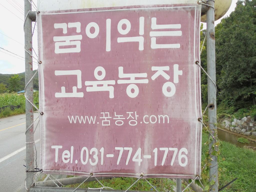 도농교류 양평 008