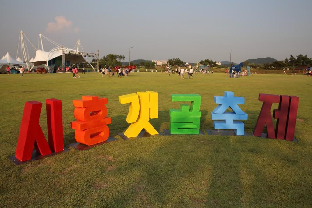 시흥갯골 206