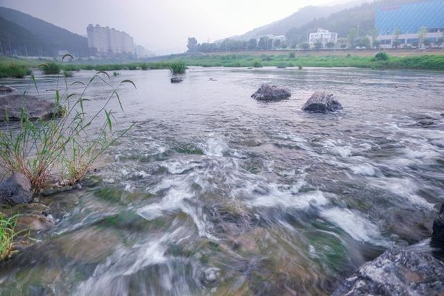 청석공원 (6)