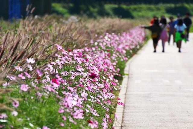 청석공원 (9)