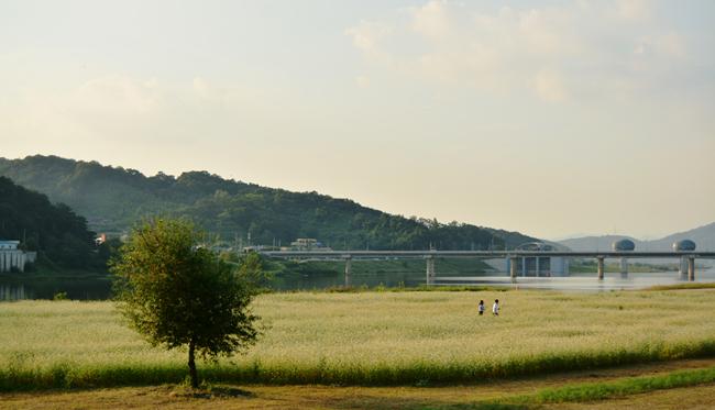 남한강을 바라보며