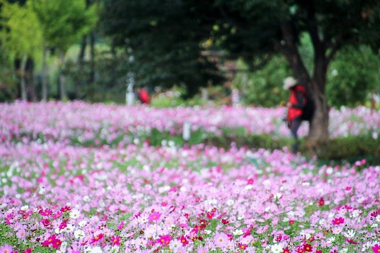 구리한강시민공원010