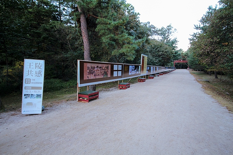 동구릉003