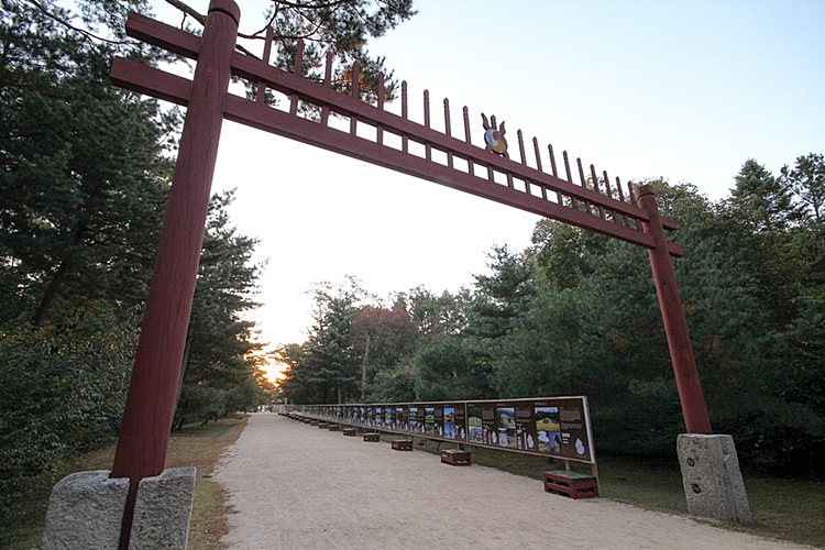 동구릉005