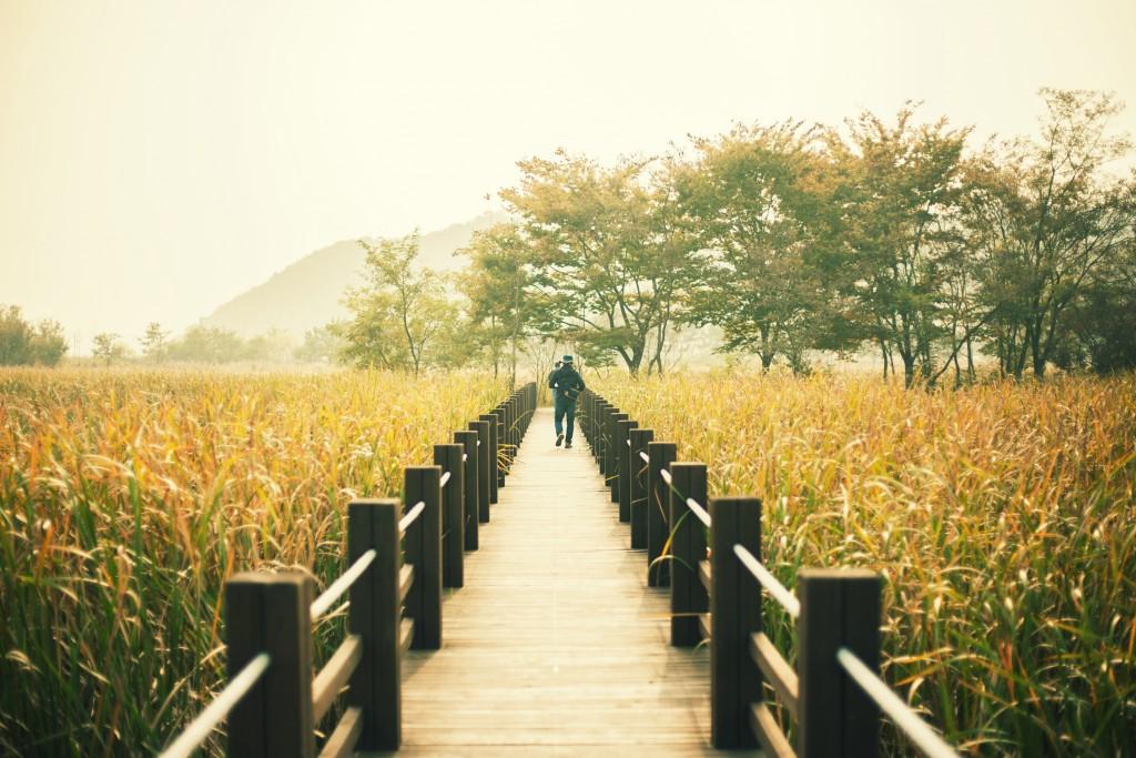 습지4 (2)