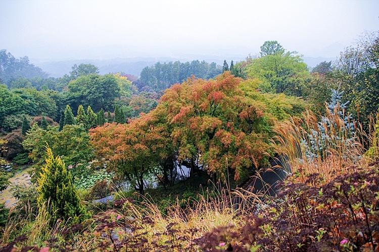 한택식물원012