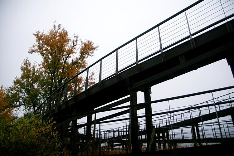 다산생태공원005
