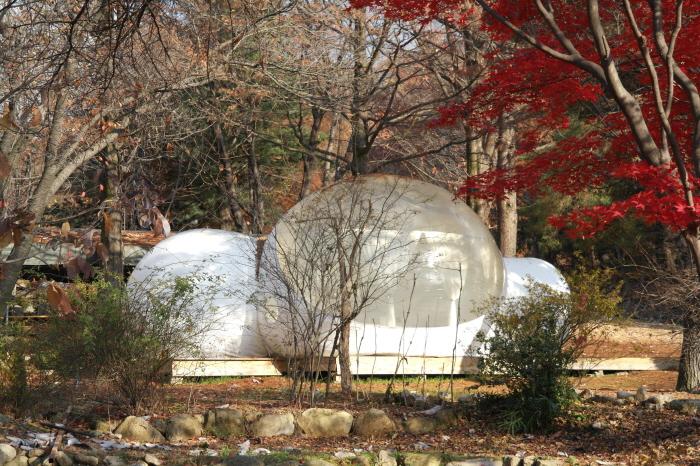 양주 헤세의 정원