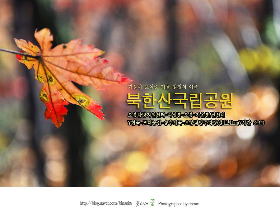 2015.10.27 도봉산7 가을절정