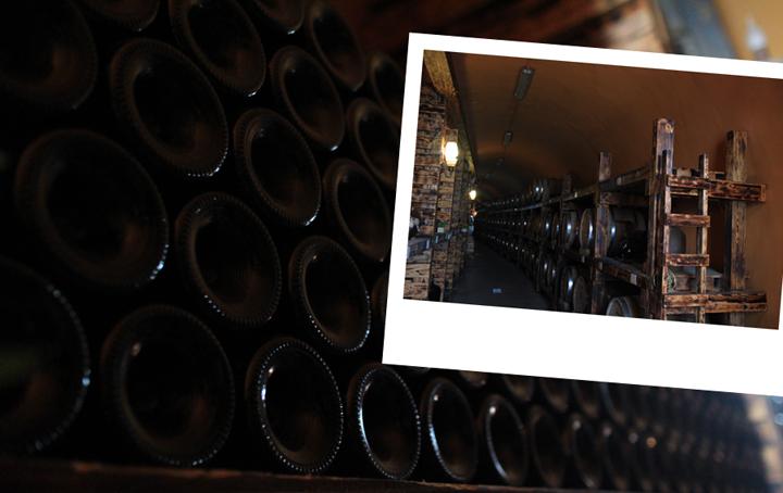 와인 숙성 시설