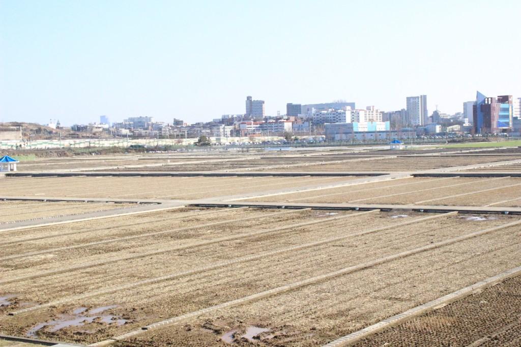 고색행토문화간 260
