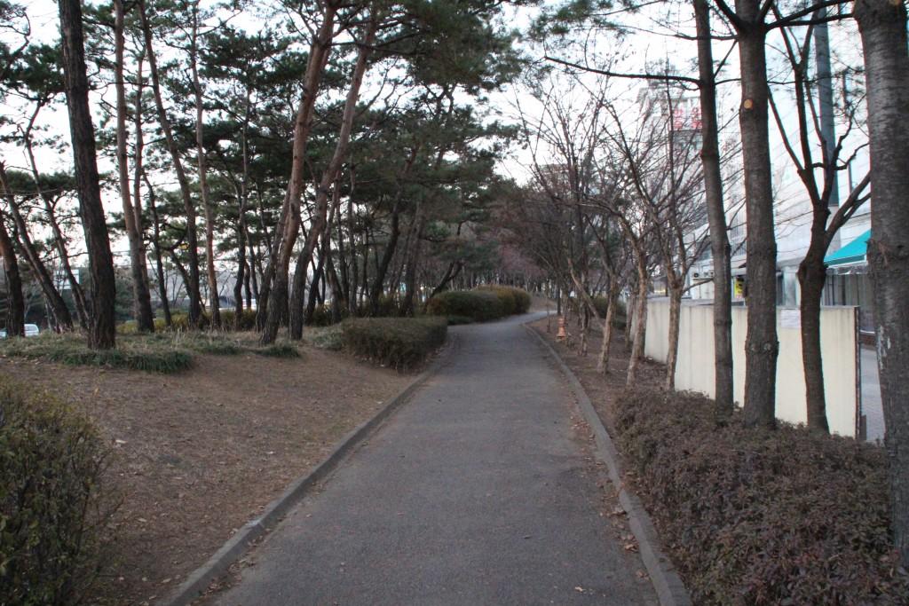 북정동불빛 017