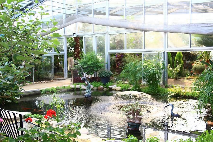 양평들꽃수목원 온실 풍경
