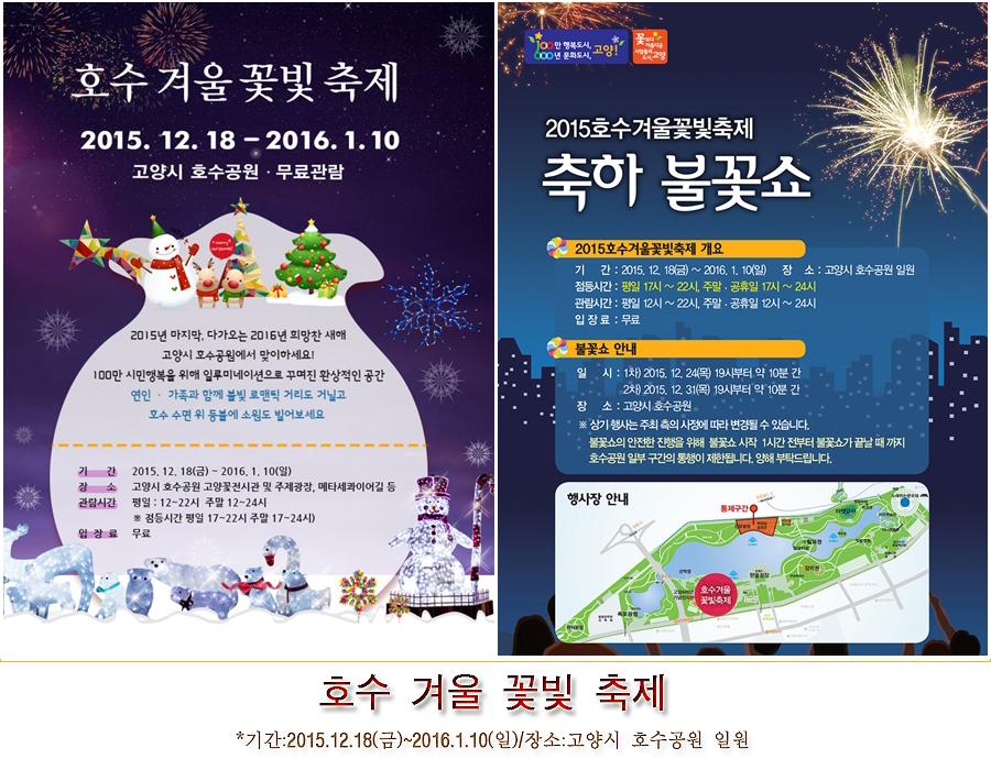 2015.12.18호수겨울꽃빛축제 고양시 호수공원
