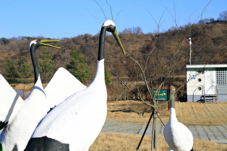 경기도연천임진강평화습지원