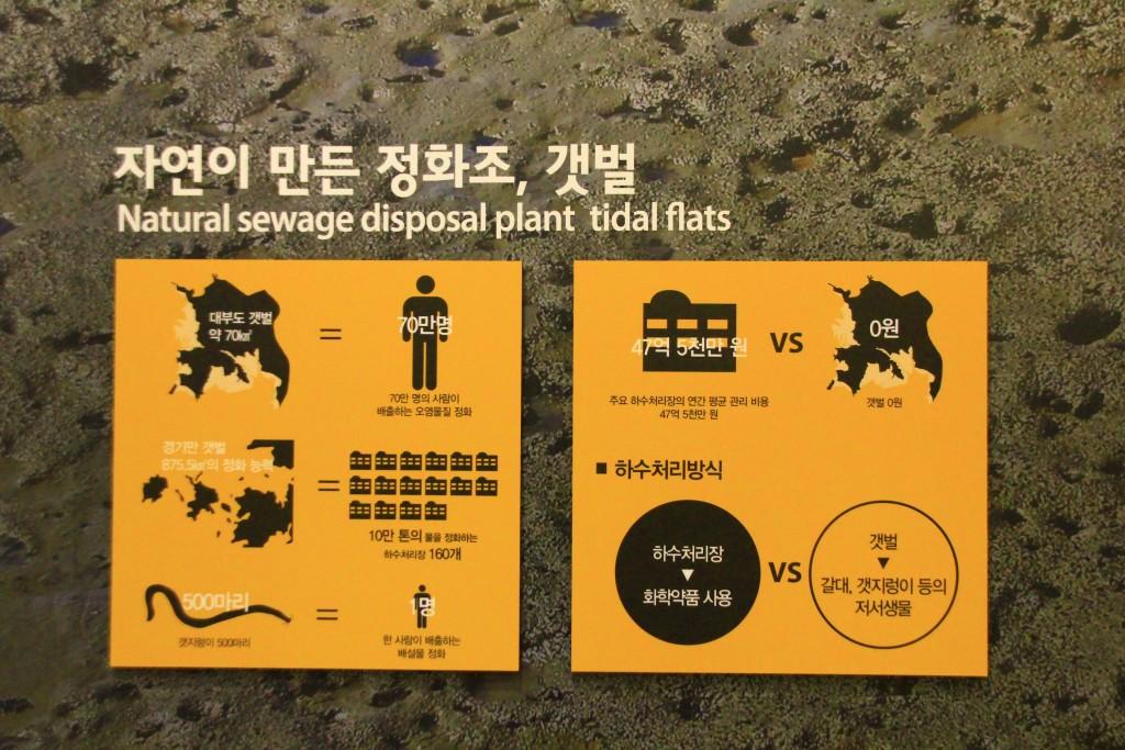 강남맛집, 궁평항, 안산유리 664