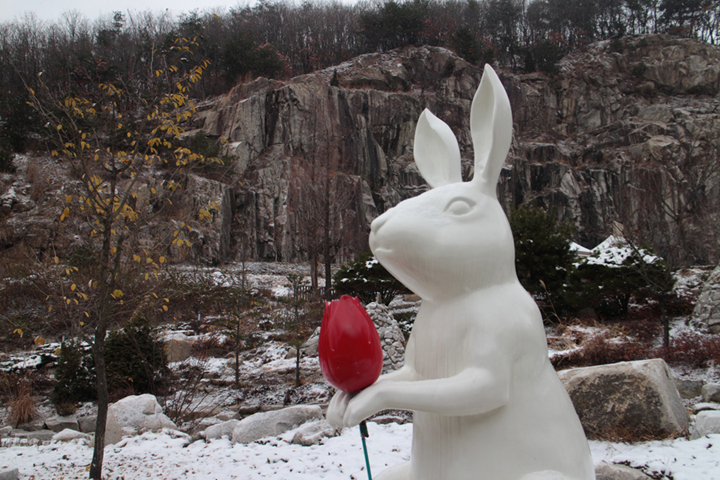 즐거운 토끼