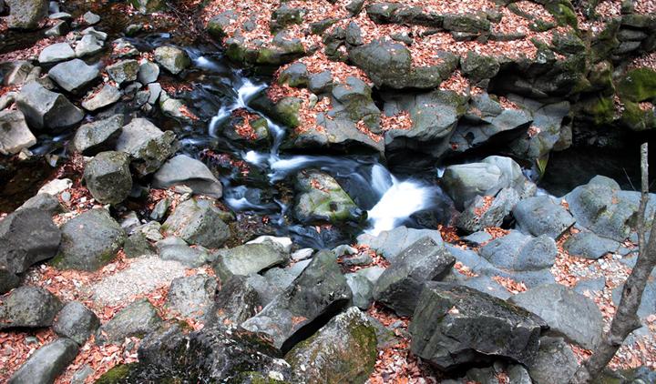한탄강으로 흘러가는 물줄기