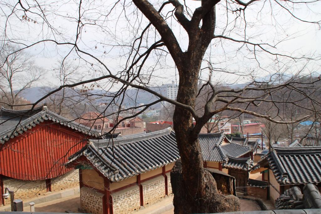 고양들메길,최영장군 052
