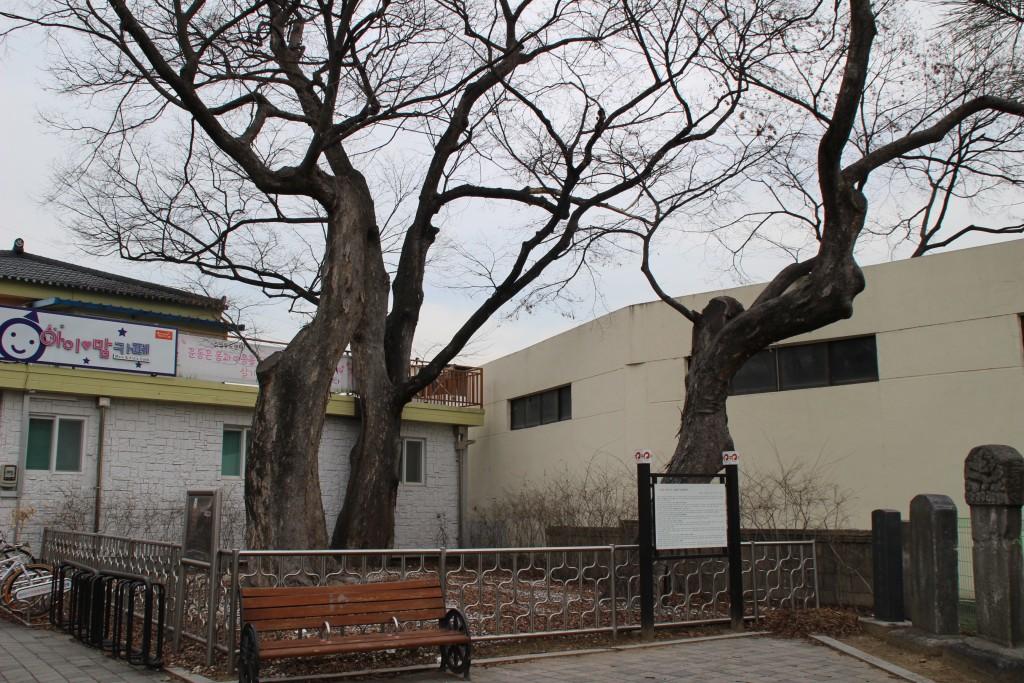 고양들메길,최영장군 086