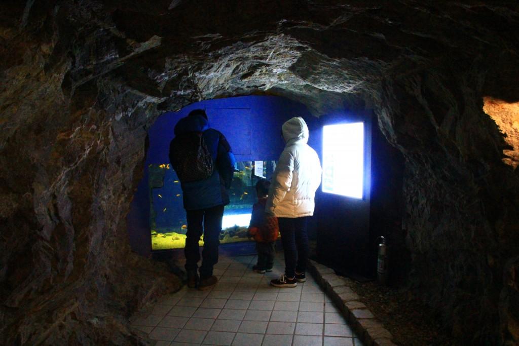 광명동굴 062