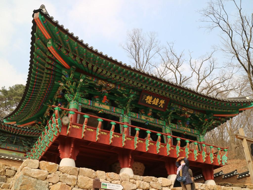 양평딸기, 안산다문화 181