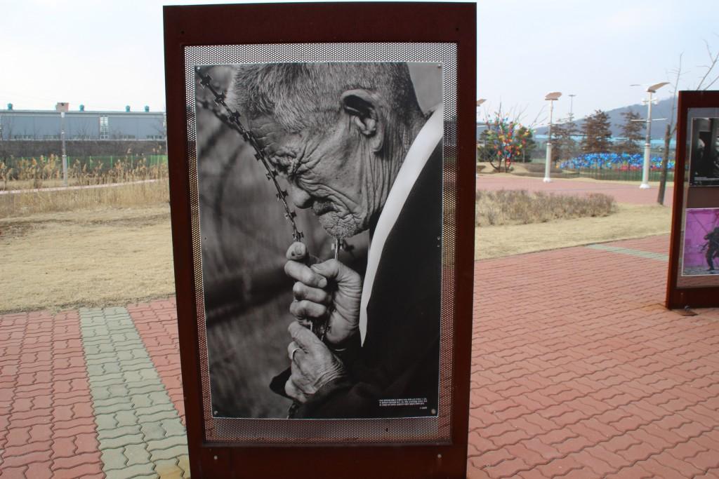 캠프그리브스,독수리,도라산공원 191