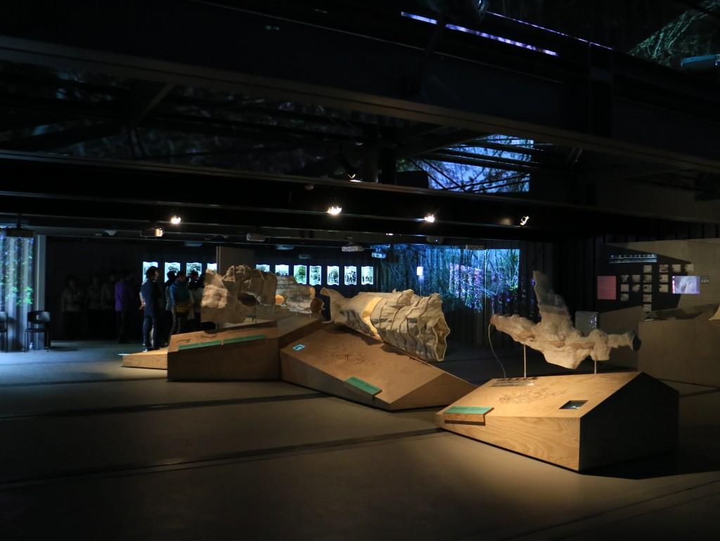 광명동굴,충현박물관, 테크노마트카메라 308