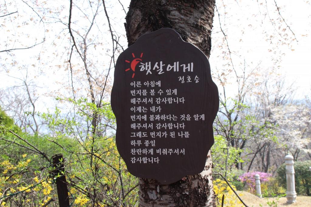 문원미산,도당산,무릉도원,동대 039