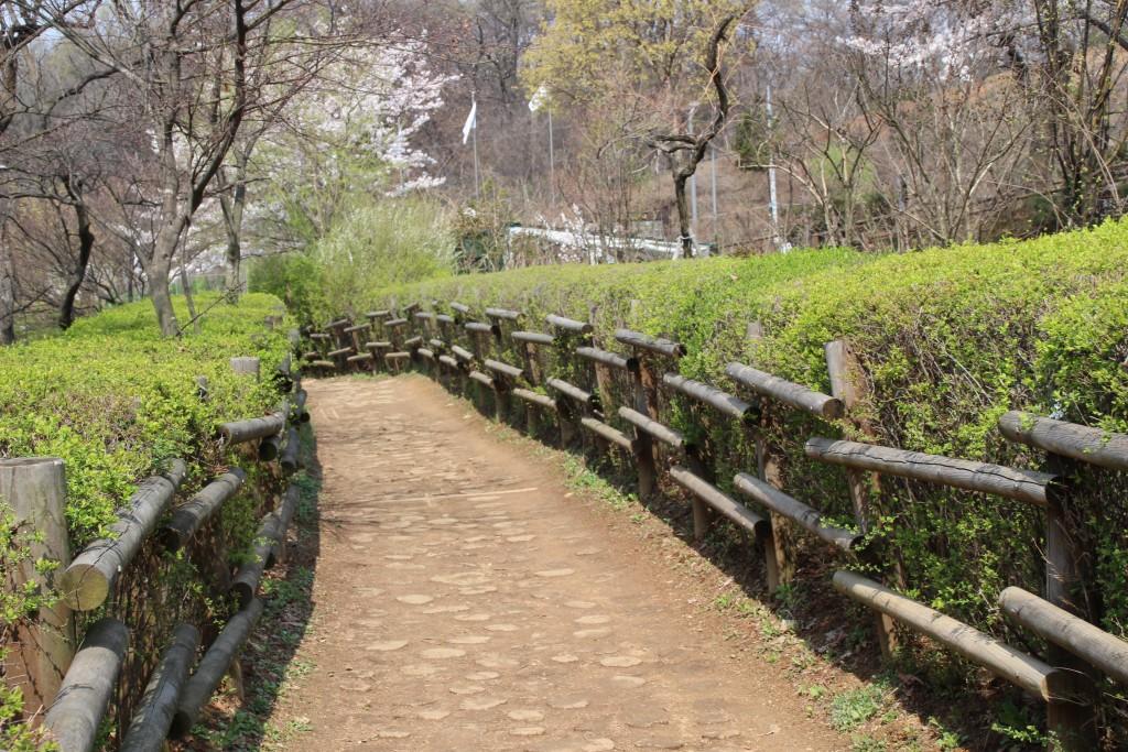 문원미산,도당산,무릉도원,동대 069