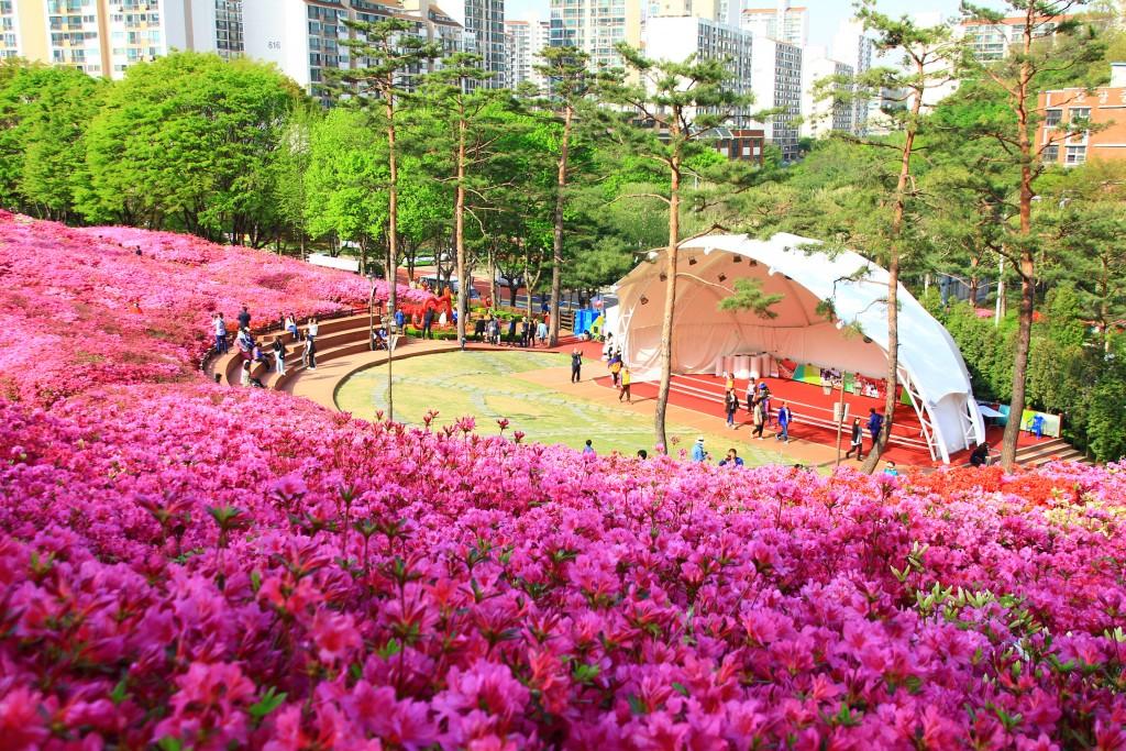 의왕왕송저수지, 군포철쭉동산,시골밥상 186